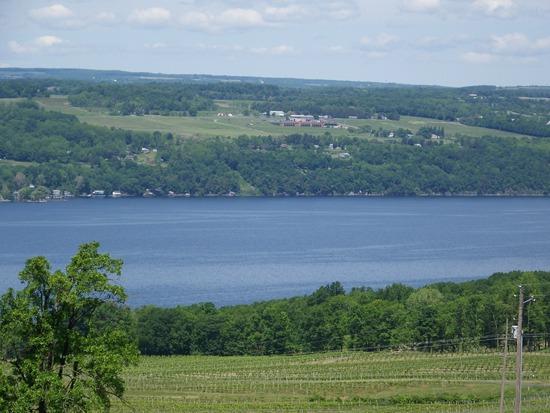 Shtayburne Farm Lake 2