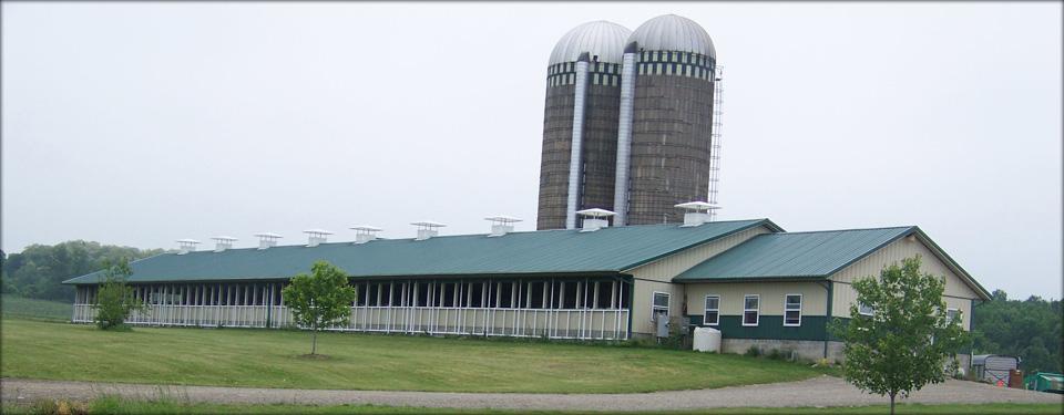 Shtayburne Farm