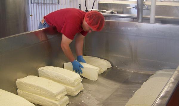 shtayburne farm cheese making
